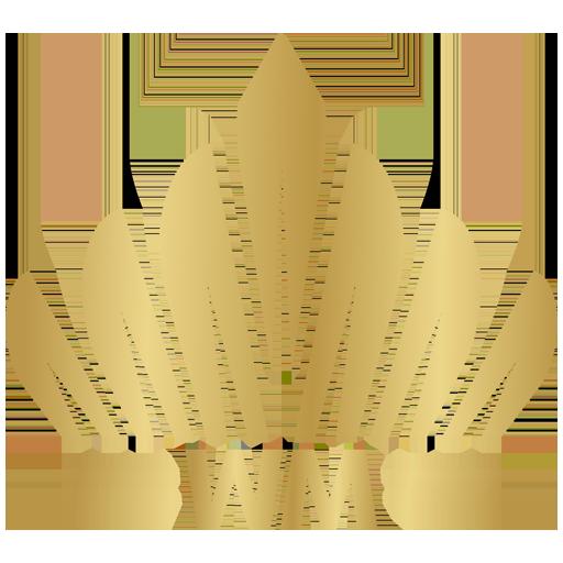Wiggert Meerman